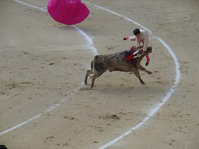 Juan Jose Gimeno Mora cogido por Bombero el 11 de mayo de 2009 en la plaza las Ventas de Madrid