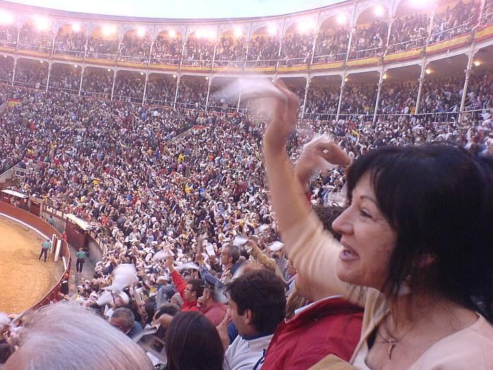 El Juli divide y vence en Madrid