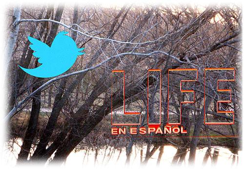 - Nuestras vidas son los ríos, Jorge Manrique