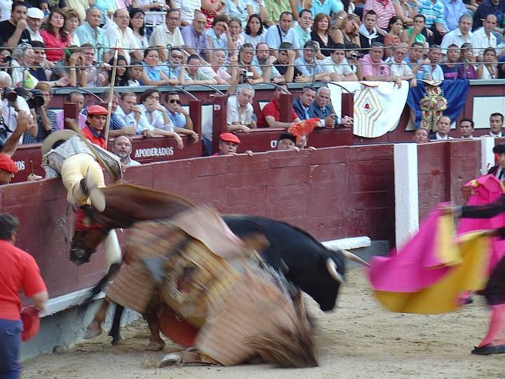 Agustin Moreno | Linternito | Guadaira encaste JP Domecq | 536 Kg.