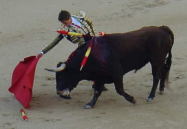 Alfonso Simpson dando un pase de muleta a Quemaplumas, castaño bocidorado de 451 kilos de la ganaderia Veldeolivas encaste Nuñez el 8 de septiembre de 2007 en la plaza monumental de toros de las Ventas de Madrid
