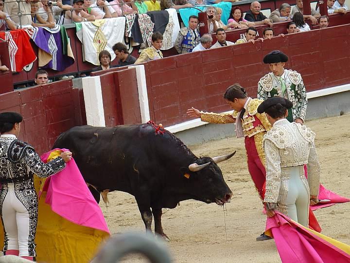 toreros Carlos Guzman Ricardo Aguin Juan Martin Francisco Alarcon toro Doliente ganaderia Torreherberos encaste Domecq